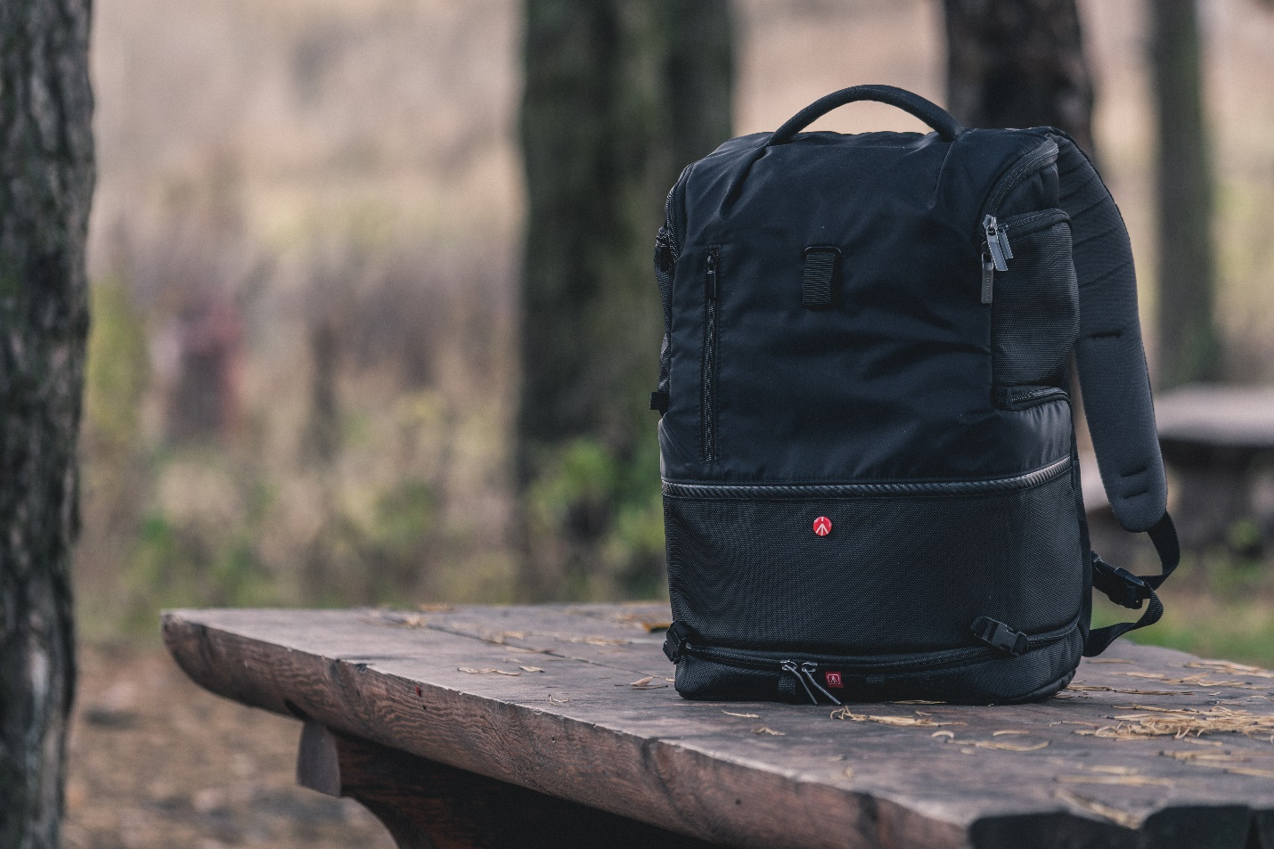 Expect extraordinary execution with this North Face backpack